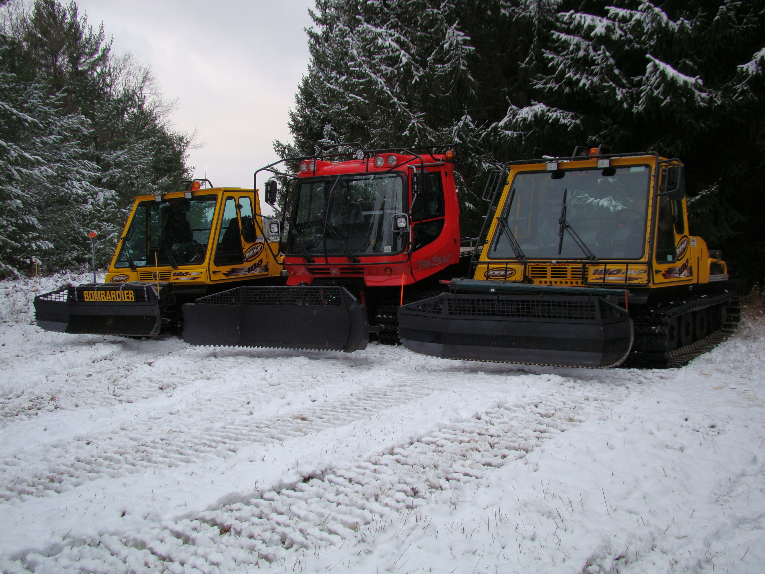 Pictures/Groomers.2011.JPG